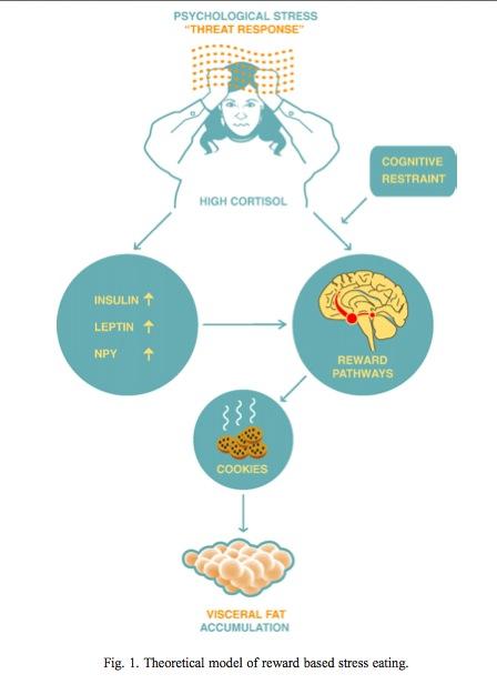 reward based stress eating